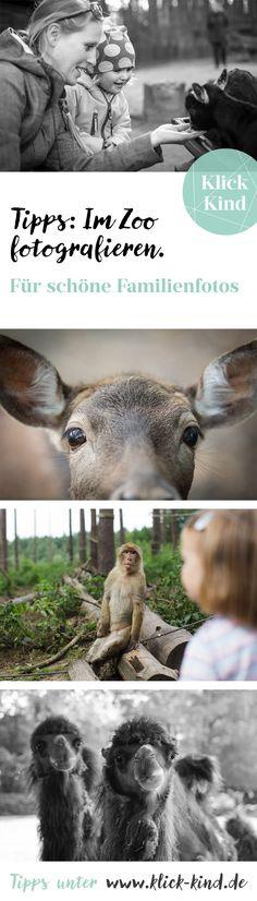 Fotografie Tipps für schöne Kinderfotos im Zoo mit Tieren