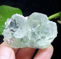 Lustrous Green Fluorite crystal Mineral Specimen China 1560 #UnbrandedGeneric