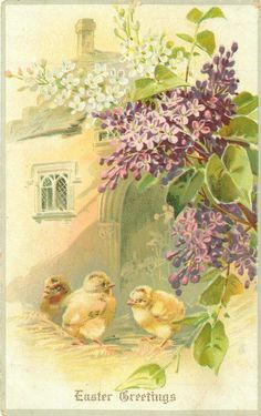 EASTER GREETINGS three chicks in front of church door, lilac top/right