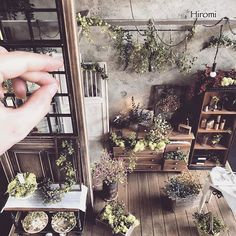Awwww!!! so cute... My dream home as a miniature>3