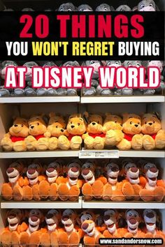 20 Things You Won't Regret Buying at Disney World: Looking for the best ways to spend your money at Walt Disney World? From taking the pressure off taking photos to party tickets and snack… More