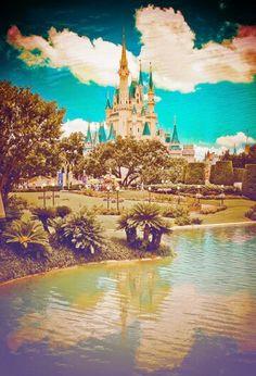 Beautiful Walt Disney World photo!
