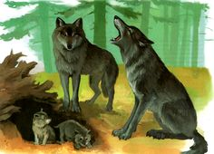 Funny Animals, Cute Animals, Different Forms Of Art, Forest Theme, Wildlife Art, Animal Paintings, Art Forms, Kindergarten, Beautiful Pictures