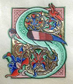 Romanesque letter S Medieval Manuscript, Medieval Art, Medieval Dragon, Celtic Dragon, Illuminated Letters, Illuminated Manuscript, Illumination Art, Celtic Art, Celtic Symbols