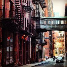 """Staple Street."" —ciaochessa"