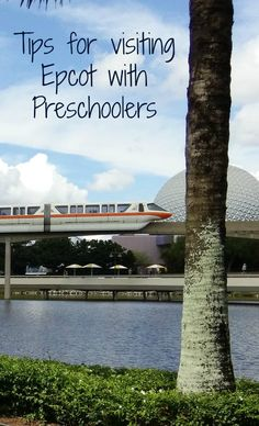 Planning to take your tot to Epcot in Walt Disney World? Here's everything you need to know about taking toddlers and preschoolers to Epcot and having a blast.