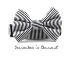 Charcoal Seersucker Bow Tie Dog Collar Charcoal by BowWowCouture