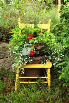 Recycle an old chair into a cheery planter (@ Garden Therapy)