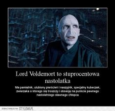 Why Voldemort is like a teenage girl Harry Potter Mems, Harry Potter Film, Harry Potter Facts, Harry Potter Fandom, Jarry Potter, Harry Draco, English Jokes, Johny Depp, Funny Mems