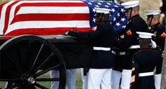 Trump, NFL protests & Fake News are uniting the country Usmc, Marines, Honor Guard, Us Politics, Fake News, Marine Corps, Baby Strollers, Nfl, United States