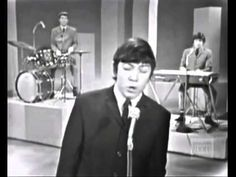The Animals - Please Don't Let Be Misunderstood..!! 1965