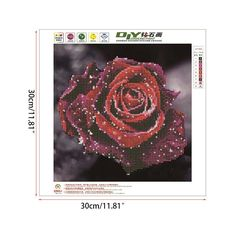 DIY 5D Diamond Painting Cross Stitch Embroidery Rose Diamond Crystal Mosaic 30cm*30cm - craftar