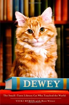 Dewey: The Small-Town Library Cat Who Touched the World b... http://smile.amazon.com/dp/0446407410/ref=cm_sw_r_pi_dp_iF5pxb1NF8AA6