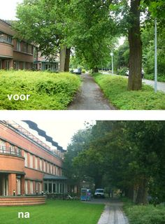 Besparingsadvies onderhoudskosten zorgterrein Monsterseweg te Den Haag, door Vollmer & Partners