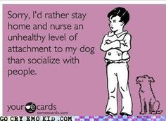 Sorry, I'd rather stay home and nurse an unhealthy level of attachment to my dog than socialize with peopole.