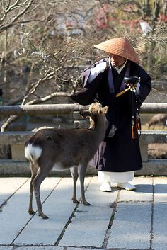 Japanese monk and deer in Nara, Japan