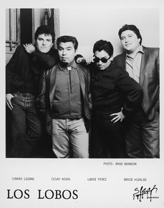 Los Lobos marks 40 years of distinctive, eclectic music on http://www.goldminemag.com