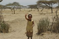 Selah Guest House   tsū  https://www.tsu.co/Ethiopia