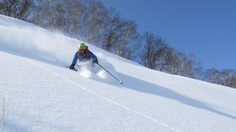 Laissez votre trace dans la poudreuse, pendant ce séjour free ride au Japon, entre mer et montagne... Voyage Ski, Ski Freeride, Best Skis, France, Skiing, Snow, World, Outdoor, Mountain