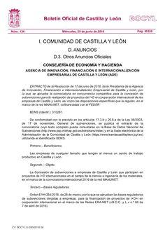 Subvenciones para la realización de proyectos de I+D en cooperación internacional de las empresas de Castilla y León