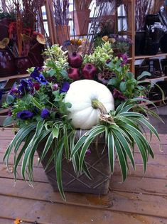 Awesome Fall Container Garden with #Pumpkin / #containergardening #fallcontainer #Fall. Via: https://s-media-cache-ak0.pinimg.com/originals/59/d1/ca/59d1caa22d69dab59fa66d636c878d57.jpg