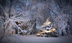 Christmas in Finland, Kiiminki
