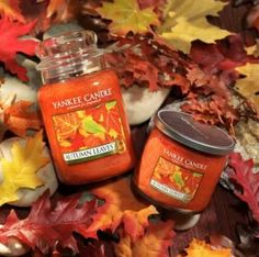 My favorite fall candle! Yankee candle Autumn leaves.