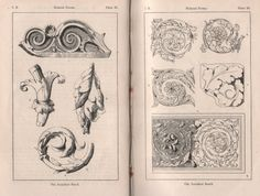 surface fragments: How to draw the Acanthus, Part I