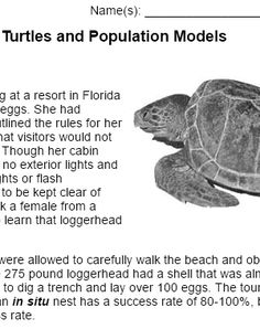 This case study focuses on survivorship curves and population models by examining a case about loggerhead turtles. Students analyze data and learn specific vocabulary related to ecology.