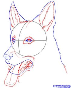 Images For > Easy Sketches Of German Shepherd Dogs