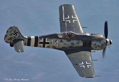 Focke Wulf Fw190 ~ BFD