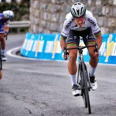 El letal ataque de Peter Sagan en el Pogio, Milan San Remo 2017