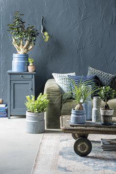 Blauwe woonkamer #kamerplanten #intratuin