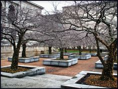 The grounds of The Art Institute of Chicago(Chicago, IL).  All rights reserved | ©goOffgoff Photography