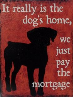 It Really Is the Dog's Home, We Just Pay the Mortgage