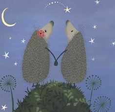 Wish upon a star with Horace and Hattie the hedgehogs from the popular Hedgehugs books written by Steve Wilson and published by Maverick Arts. Gorgeous hedgehog illustrations by illustrator Lucy Tapper.