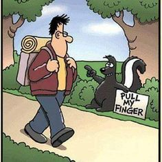 Not falling for that!!  #skunk #pullmyfinger #nosir #ew #stinky #funny #funnymeme