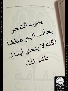 0191b672b8b677688ec3bee78ad18a54 اقوال وحكم   كلمات لها معنى   حكمة في اقوال   اقوال الفلاسفة حكم وامثال عربية