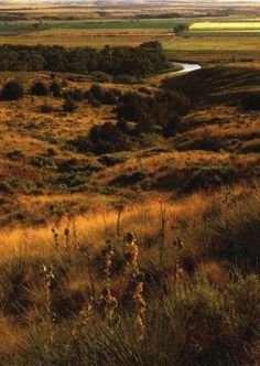 View of Little Bighorn River from Last Stand Hill, courtesy National Park Service.