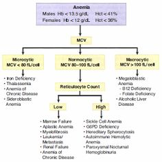 Classification of Anemias Based on MCV.