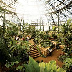 The Huntington Library, Art Collections, and Botanical Gardens - San Marino, CA