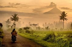 Java, Indonesia. Always the looming volcanos.