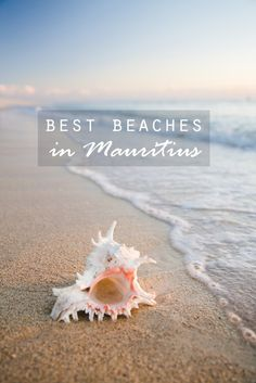 Best beaches in Mauritius and some well-kept secrets - Lost in the Midlands Mauritius Travel, Mauritius Island, Fiji Islands, Cook Islands, Mauritius Honeymoon, Mauritius Wedding, Tonga, Destin Beach, Beach Trip