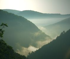 Pennsylvania grand canyon | Wellsboro, PA : Foggy Sunrise at the Pennsylvania Grand Canyon photo ...
