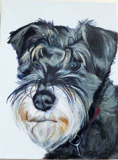 Schnauzer, acrylic on canvas, bespoke dog portrait from Barking Madden dog portraits