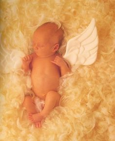 Love Anne Geddes