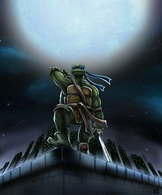 August 15, 2007 Donatello from the Teenage Mutant Ninja Turtles TMNT © Kevin Eastman and Peter Laird