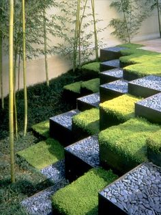 A checkerboard of black-river rock and baby's tears ground cover adds a dynamic graphic to this outdoor space.