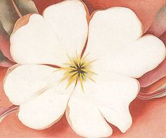 Small white trumpet flower by georgia okeefe art pinterest georgia okeeffe white flower on red earth no mightylinksfo