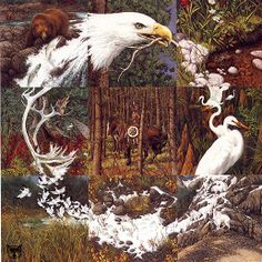 bev doolittle pictures - Bing Images